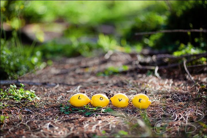 lemons Loving