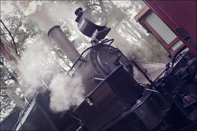 puffing billy015 Child Photography Melbourne