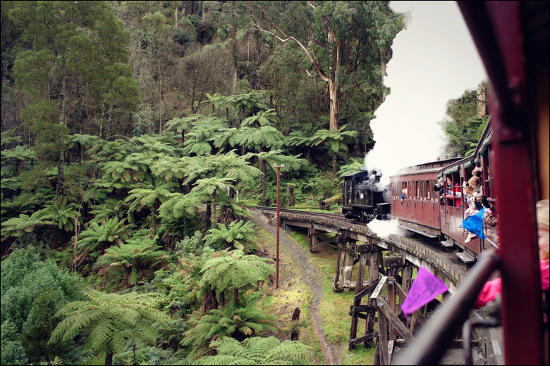 puffing billy016 Child Photography Melbourne