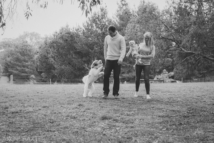 collins 123 mono Ashley, Chris and Charlotte | Melbourne Baby Photography